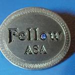 The ASA Fellow Award: 2014 Update