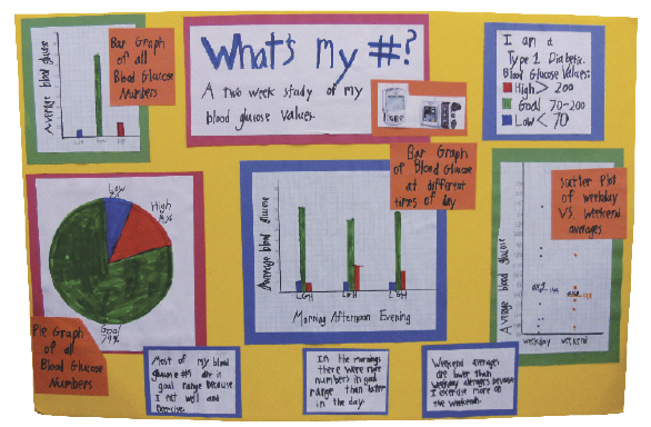 statistics project ideas high school