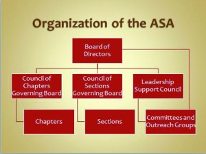 Figure 1. A chart showing the ASA leadership