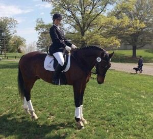 Amanda Malloy rides her Dutch Warmblood during a dressage competition in Leesburg, Virginia.