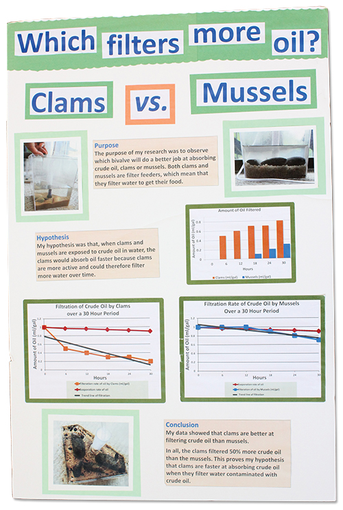 ClamvsMuscles