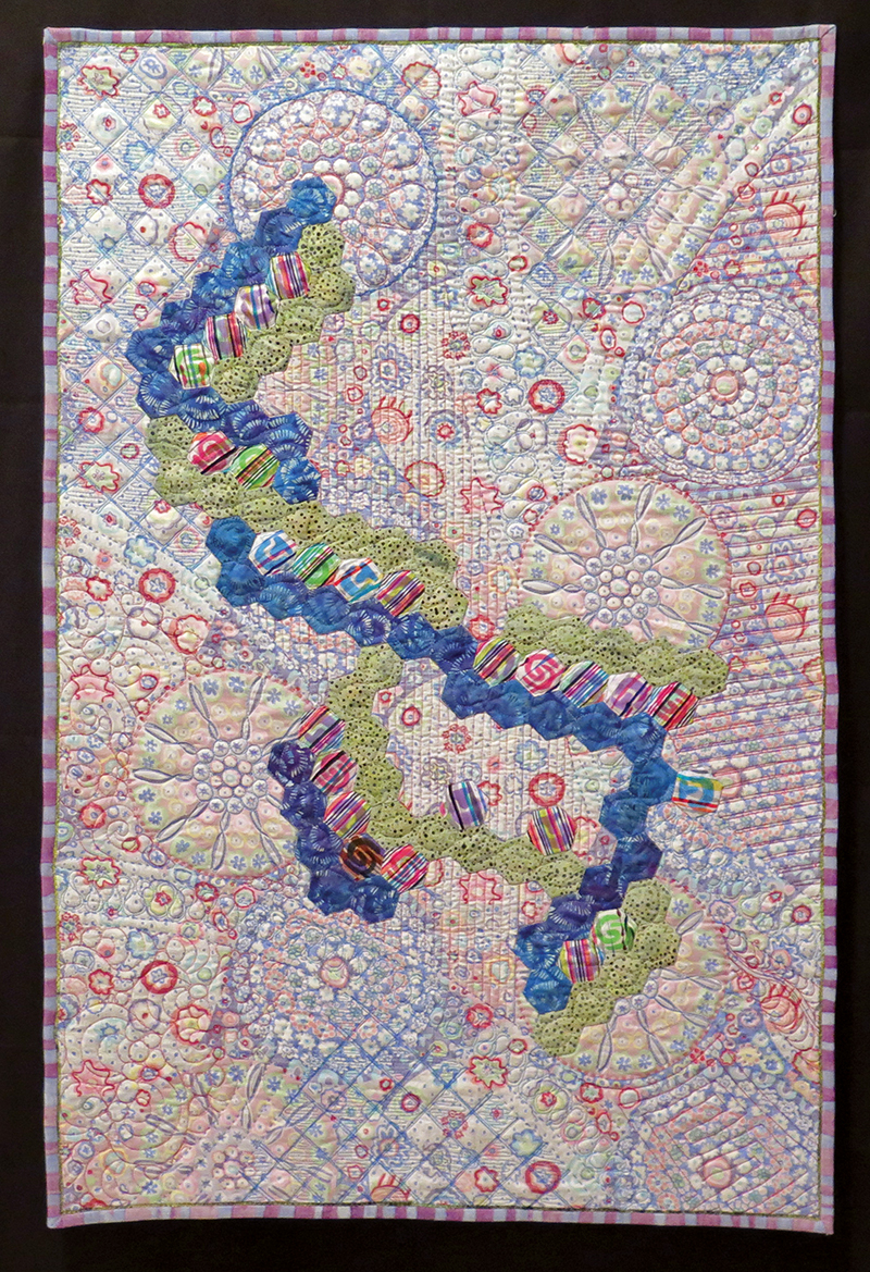 What does susan hilsenbeck do when she is not being a statistician susan hilsenbeck included a dna molecule applique in this quilt she designed gumiabroncs Image collections