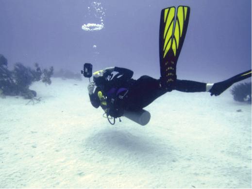 Susan Hilsenbeck scuba dives.